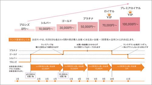 ランクアップシステムの図表